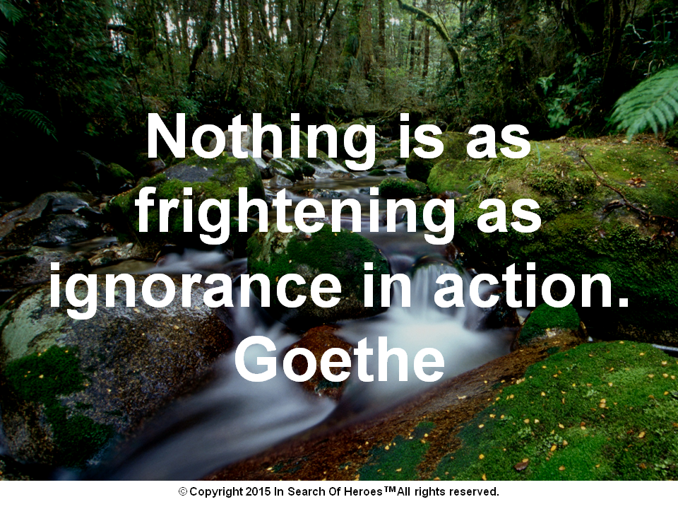 Nothing is as frightening as ignorance in action.  Goethe
